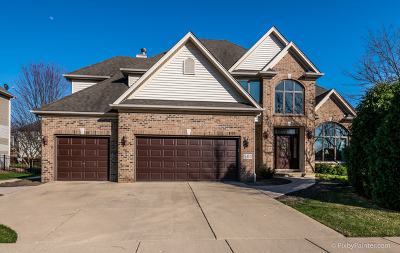 South Elgin Single Family Home For Sale: 581 West Thornwood Drive