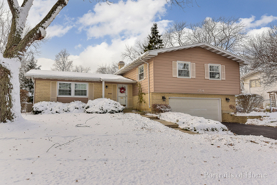 Lisle Single Family Home For Sale: 5714 Dover Drive