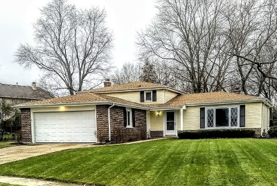 Libertyville Single Family Home For Sale: 1205 Greentree Court