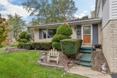 Wheaton Single Family Home For Sale: 1n260 Woods Avenue
