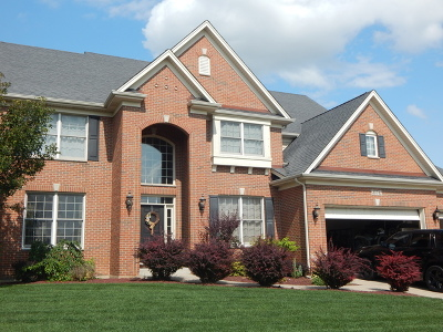 Plainfield Single Family Home For Sale: 25741 Sunnymere Drive