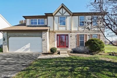 Carol Stream Single Family Home For Sale: 658 Mayfair Drive