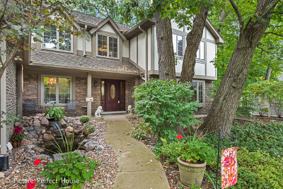 Naperville Single Family Home For Sale: 1453 Farington Court