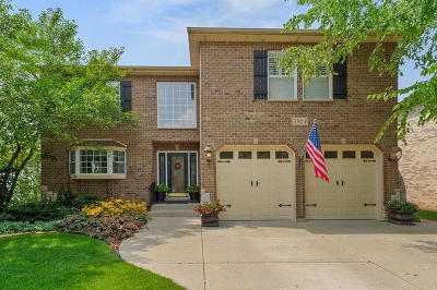 Downers Grove Single Family Home For Sale: 5924 Belmont Road
