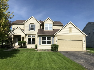 Crystal Lake Single Family Home For Sale: 801 Village Road