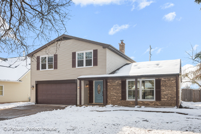 Naperville Single Family Home For Sale: 1440 Briarwood Drive