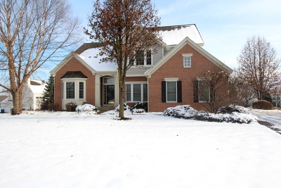 West Dundee Single Family Home For Sale: 1136 Millsfell
