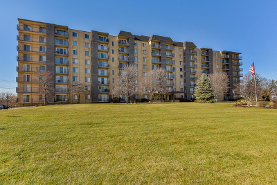 Downers Grove Condo/Townhouse For Sale: 5400 Walnut Avenue #308