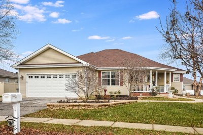 Bourbonnais Single Family Home For Sale: 1775 Samantha Lane