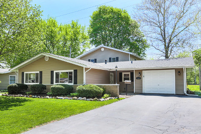 North Aurora Single Family Home For Sale: 412 Princeton Drive