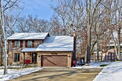 Lockport Single Family Home For Sale: 13436 Big Run Lane
