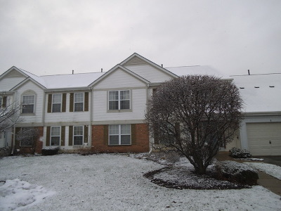 Plainfield Condo/Townhouse For Sale: 13930 South Bristlecone Lane #B