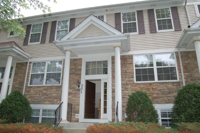 Palatine Condo/Townhouse For Sale: 771 West Misty Drive