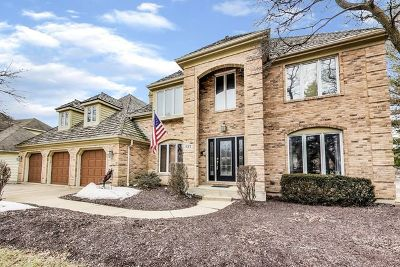 Naperville Single Family Home For Sale: 837 Turnbridge Circle