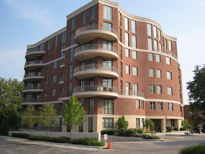 Naperville Condo/Townhouse For Sale: 520 South Washington Street #201