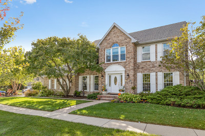 Hoffman Estates Single Family Home For Sale: 1618 Castaway Court