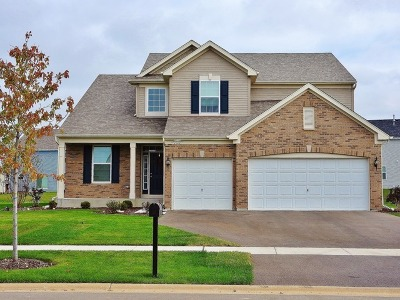 Joliet Single Family Home For Sale: 8508 Wellington Drive
