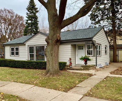 Libertyville Single Family Home For Sale: 602 South Stewart Avenue
