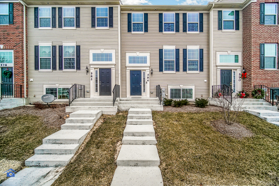 Grayslake Condo/Townhouse For Sale: 586 Cannonball Drive