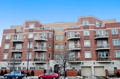 Chicago IL Condo/Townhouse For Sale: $360,000