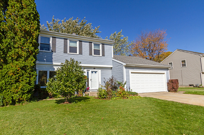 Schaumburg Single Family Home For Sale: 348 North Walnut Lane