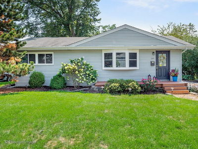 Downers Grove Single Family Home For Sale: 329 Lincoln Avenue
