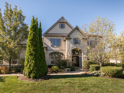 Libertyville Single Family Home For Sale: 31062 Sage Court