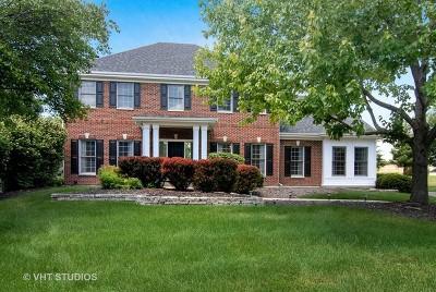 St. Charles Single Family Home For Sale: 4n438 Robert Penn Warren Cove Street