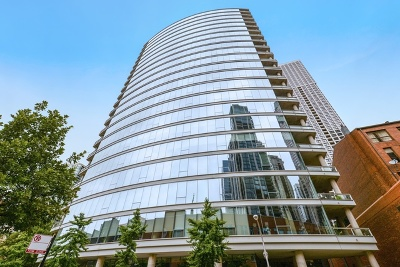 Condo/Townhouse New: 30 West Oak Street #6F