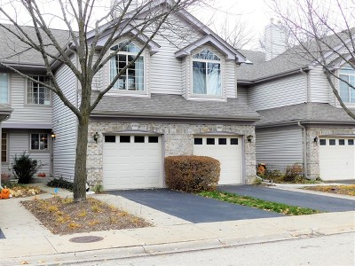 Palatine Condo/Townhouse For Sale: 1558 North Saint Marks Place