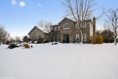 Elburn Single Family Home For Sale: 1656 Spring Valley Drive