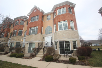 Orland Park Condo/Townhouse New: 17951 Fountain Circle