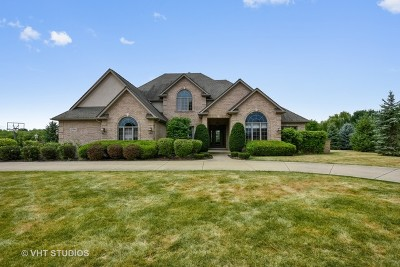 Naperville Single Family Home New: 10956 Royal Porthcawl Drive
