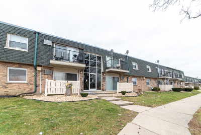 Palos Hills Condo/Townhouse New: 8423 West 99th Terrace #215