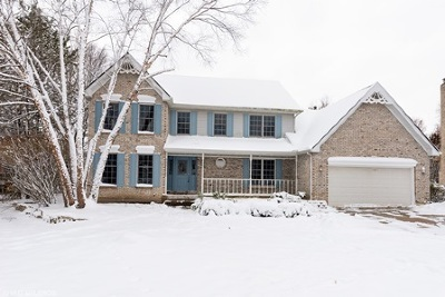 Elgin Single Family Home For Sale: 938 Stonehaven Court