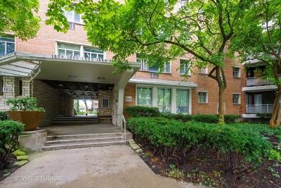 Evanston Condo/Townhouse For Sale: 1866 Sherman Avenue #1NE