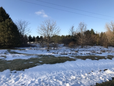 Ogle County Residential Lots & Land For Sale: 000 Stillman Valley Road
