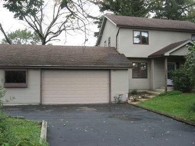 Downers Grove Single Family Home For Sale: 10 West 61st Street