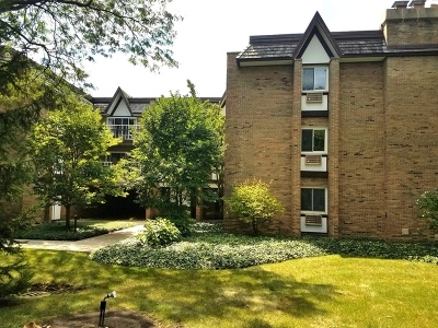 Hinsdale Condo/Townhouse For Sale: 360 Claymoor Street #2F