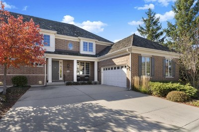 Northbrook Condo/Townhouse For Sale: 2116 Royal Ridge Drive