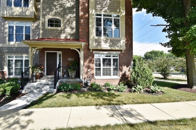Geneva IL Condo/Townhouse New: $659,000