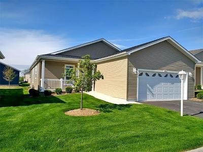 Grayslake Single Family Home For Sale: 1453 Harvest Court