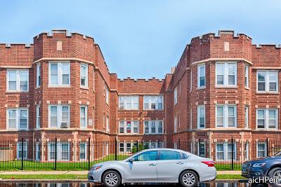 Chicago Multi Family Home New: 6529 South California Avenue