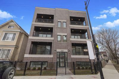 Chicago Condo/Townhouse New: 3245 North Elston Avenue #1N