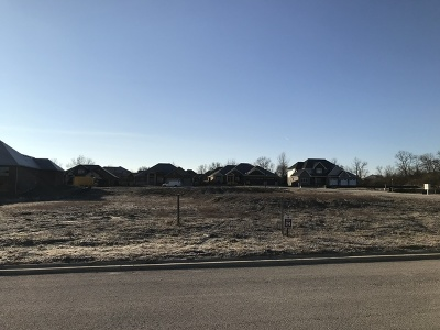 Mokena Residential Lots & Land For Sale: 19225 Ginger Creek Lane