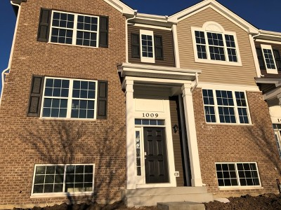 Naperville Condo/Townhouse New: 1009 Charlton (Lot 1701) Lane