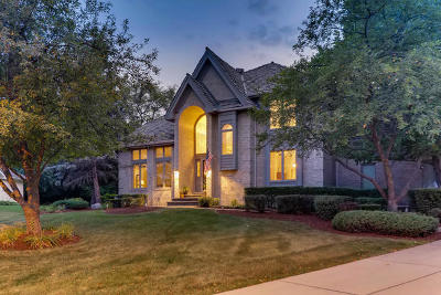 Orland Park Single Family Home New: 15110 Vail Court