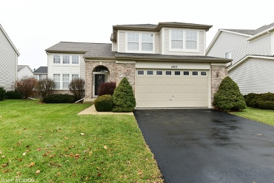 Naperville Single Family Home New: 2123 Skylane Drive