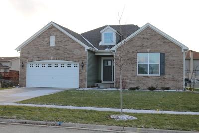 Minooka, Channahon Single Family Home For Sale: 802 Long Ridge Trail