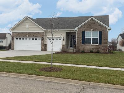 Minooka, Channahon Single Family Home For Sale: 805 Long Ridge Trail